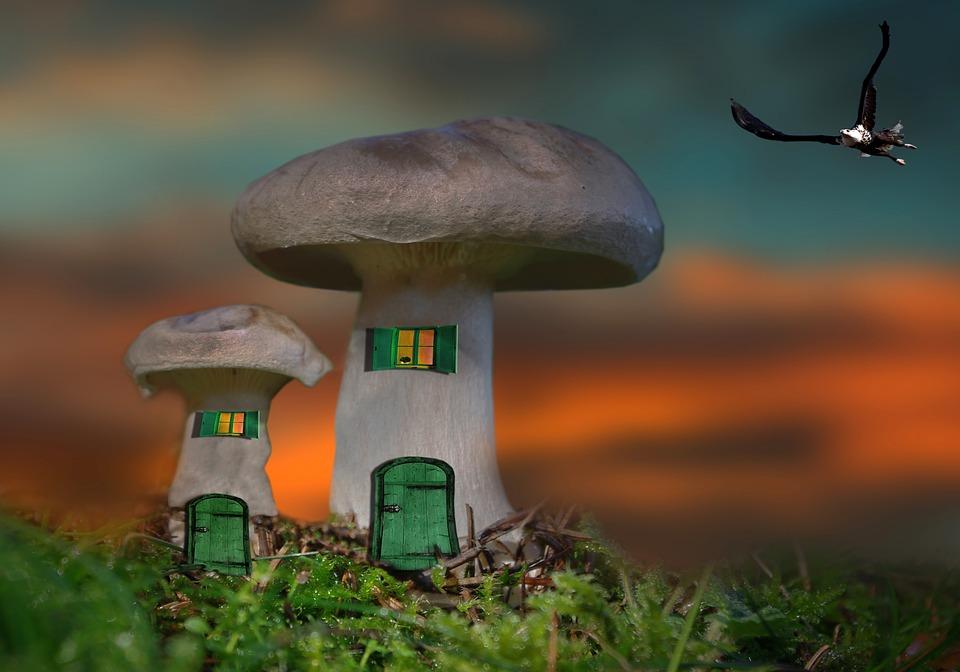 Kostenlose Illustration Pilz Haus Pilzhaus Fantasie