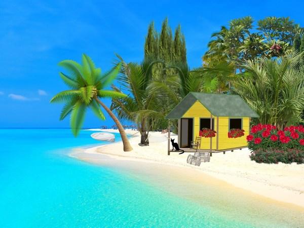 sea ocean sand free