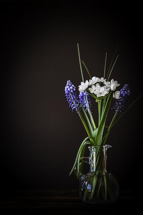 Fall Wallpaper For Facebook Flowers Flower Vase 183 Free Photo On Pixabay