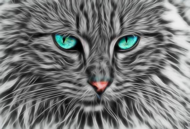 3d Cat Wallpapers Download Free Illustration Fractal Fractal Cat Cat Art Cat