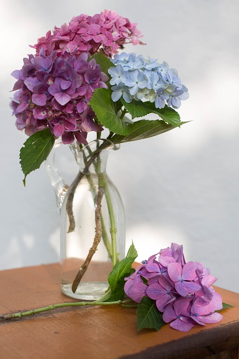 Flower Vase Glass  Free photo on Pixabay