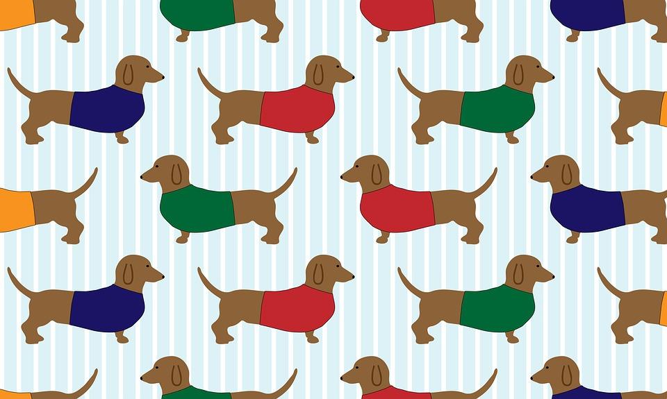 Fall Wallpaper Dog Weenie Kostenlose Illustration Dackel Hund Cartoon Kunst