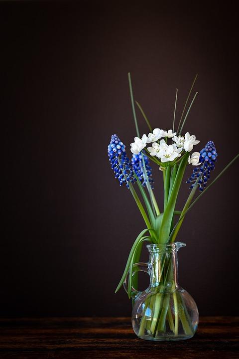 Fall Daisy Wallpaper Free Photo Flowers Vase Glass Leek Flower Free Image