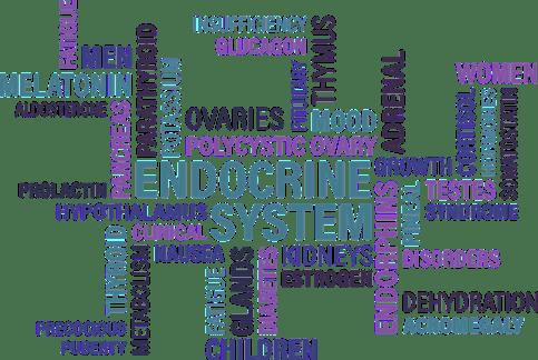 Tiroide, Endocrino, Diabete, Ghiandola, Sindrome