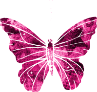 Butterfly Pink Clipart  Free image on Pixabay