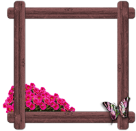 Free illustration: Wood, Window, Frame, Butterfly - Free ...