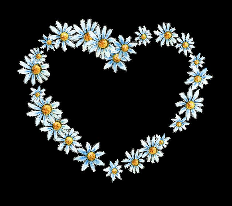 Floral Flower Frame  Free image on Pixabay