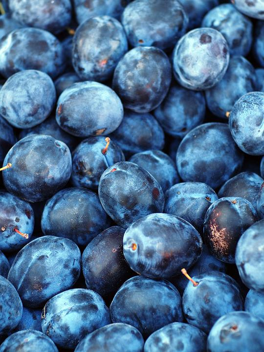 Free photo Plum Fruit Texture Blue Purple  Free