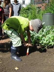 Crianças, Natureza, Jardinagem, Plantation