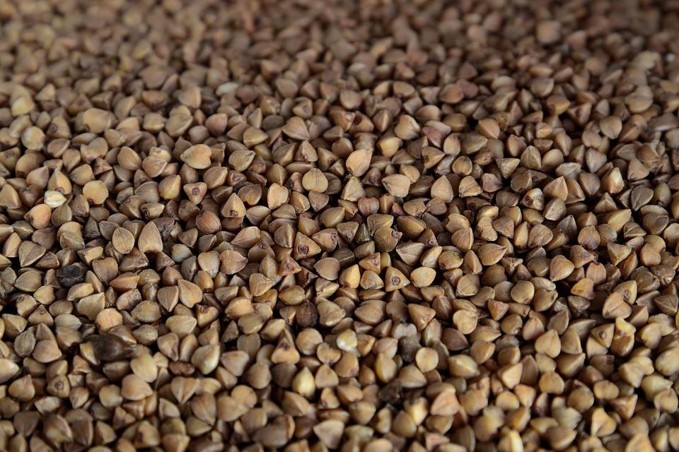 Sarrasin, Céréales, Régime Alimentaire