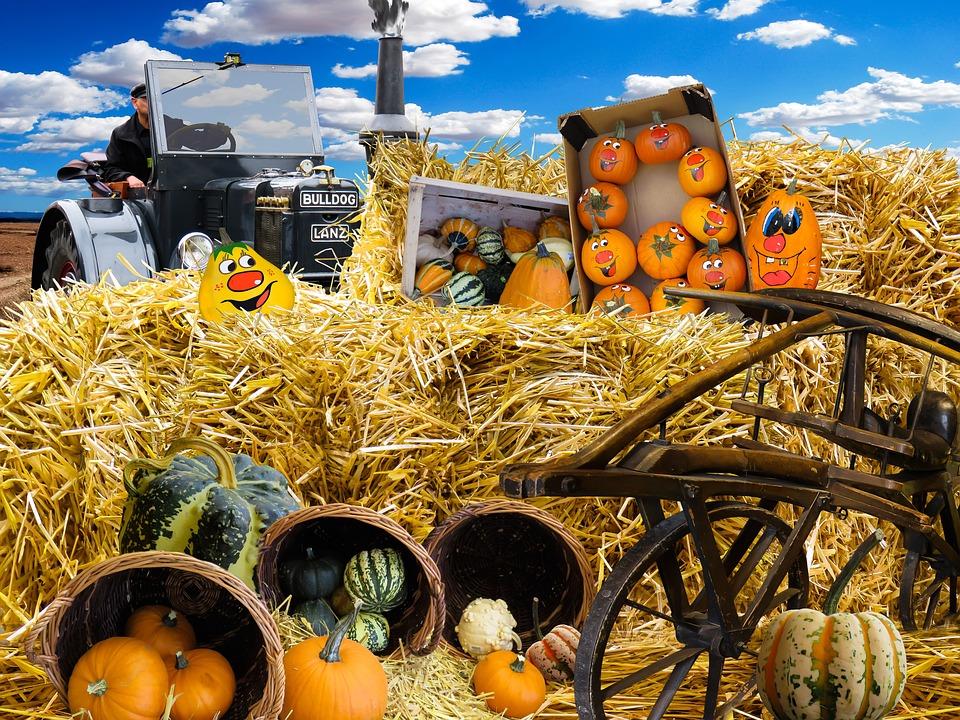 Computer Desktop Hd Wallpapers Fall Free Photo Autumn Pumpkins Harvest Free Image On