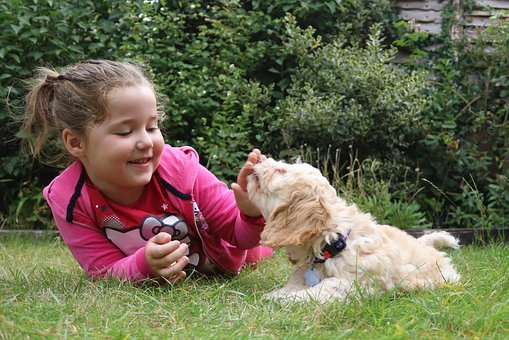 Girl playing with family dog