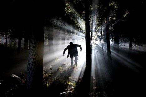 Eery Fear Stalk Frankenstein Forest Psycho