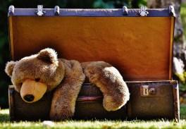 Bagage, Antik, Teddy, Mjukdjur, Uppstoppade Djur