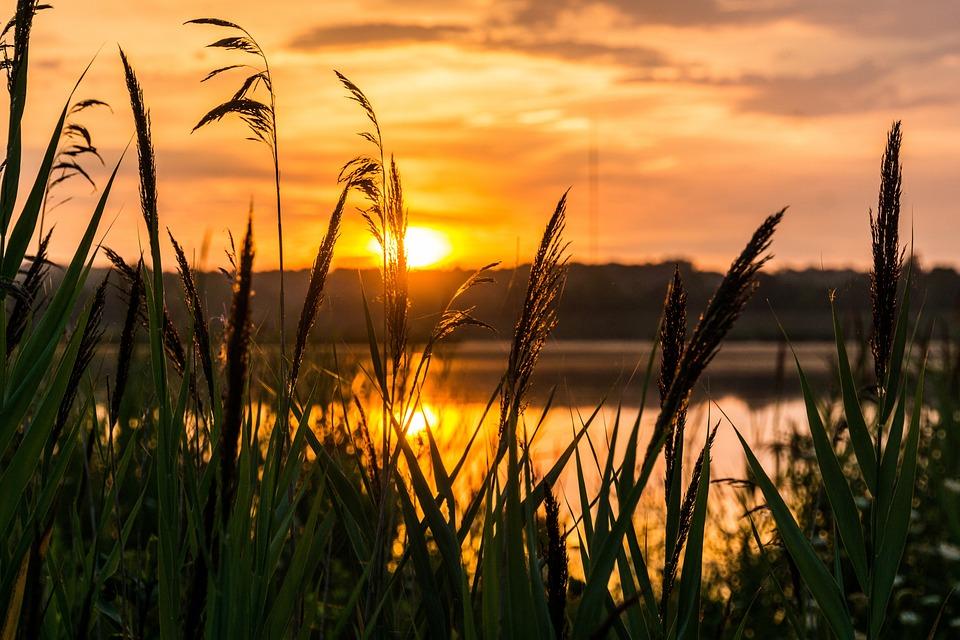 Happy Fall Wallpaper 1366x768 Sunrise Hope Morning 183 Free Photo On Pixabay