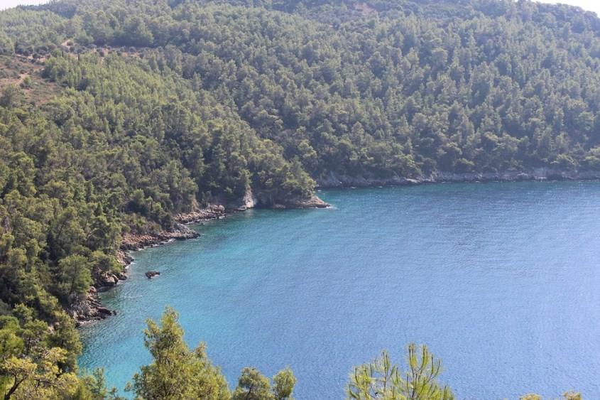 Türkiye, Muğla, Akbük, Doğa, Orman, Deniz, Koy