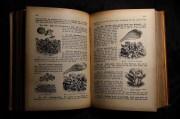 Antiquariat, Oude Cookbook, Kookboek, Boek