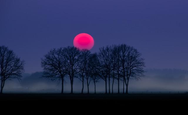 Free Photo Red Sun Fog Landscape Nature Free Image