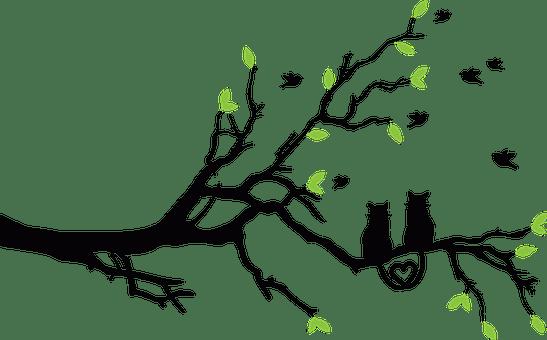 Gatos Silueta Imágenes · Pixabay · Descarga imágenes gratis