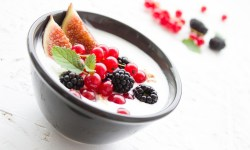 17 Manfaat Bakteri Probiotik Bagi Kesehatan Manusia