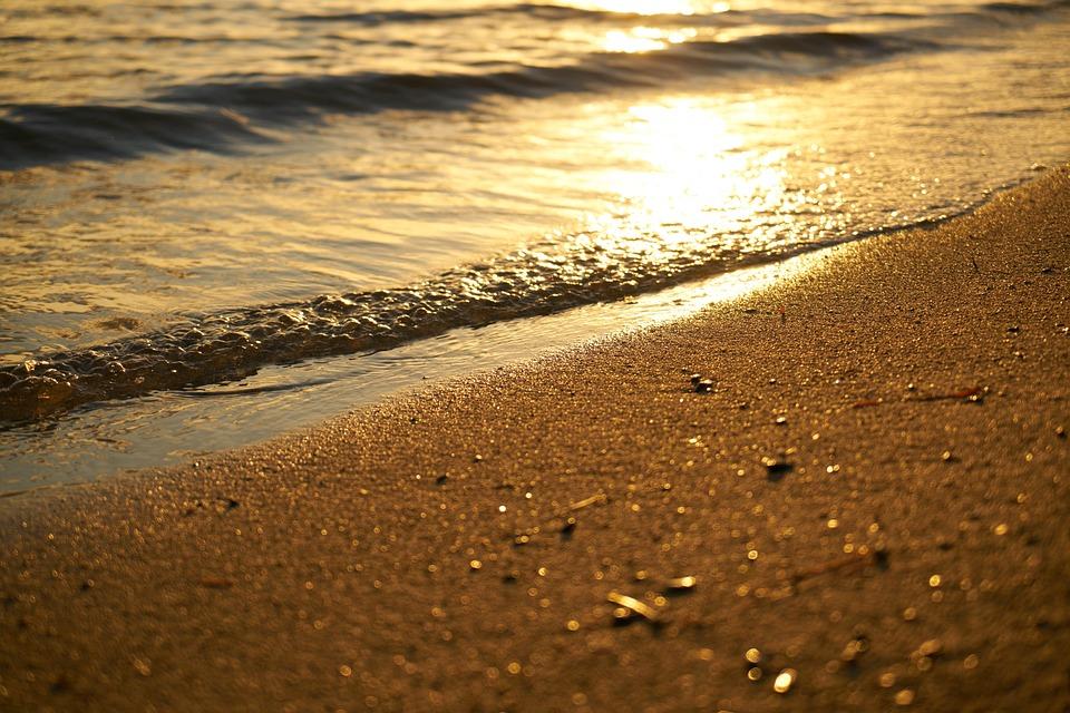 Free photo Background Nature Beauty  Free Image on