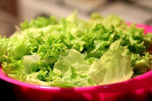 Food, Salad, Lettuce, Healthy