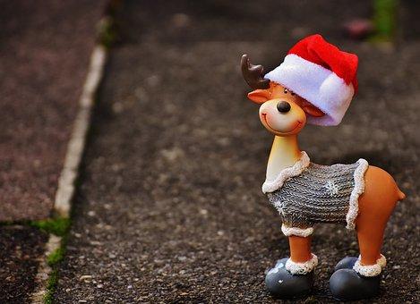 Moose, Christmas, Christmas Motif