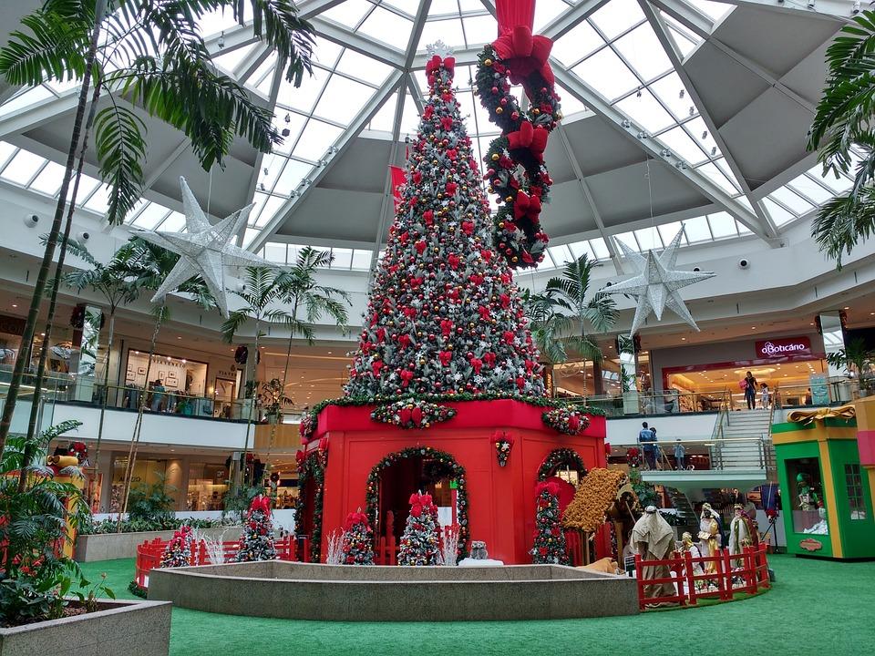 Kostenlose Foto Baum Ast Star Urlaub Weihnachten