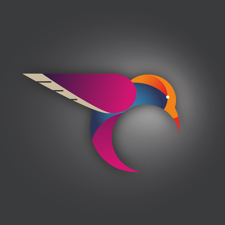 hummingbird bird vector free