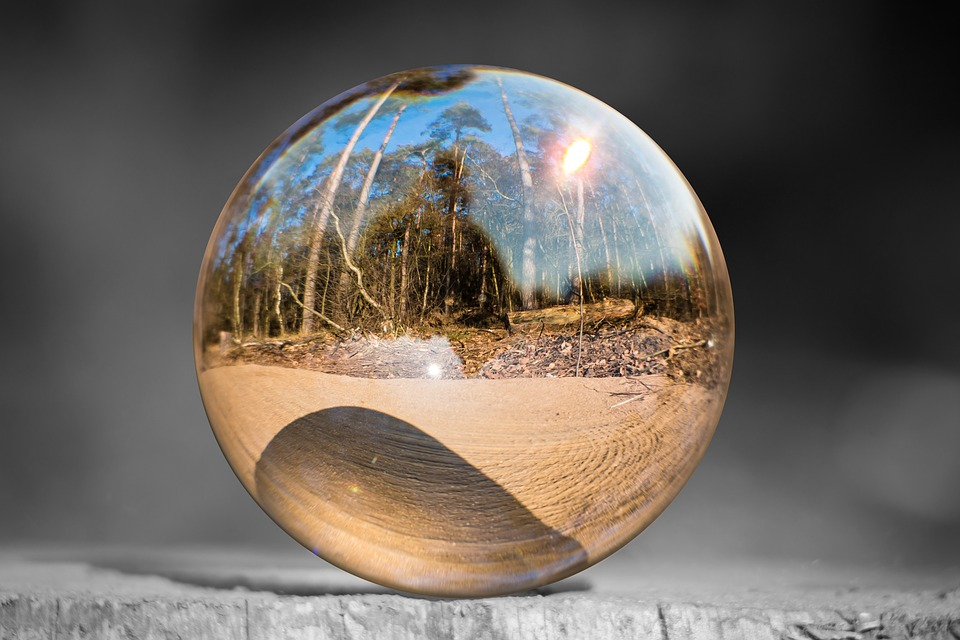 Free Fall Forest Wallpaper Glass Ball Tree Stump Forest 183 Free Photo On Pixabay