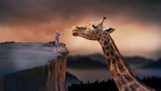 Giraffa, Bambino, Natura, Sogno, Fantasia