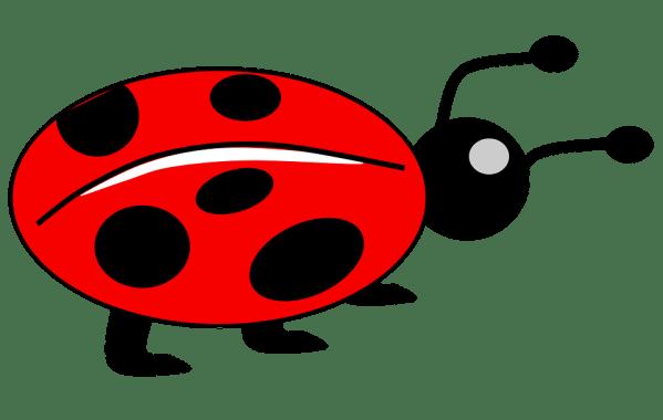 lady bug kids animal free vector