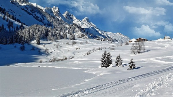 snow landscape winter free