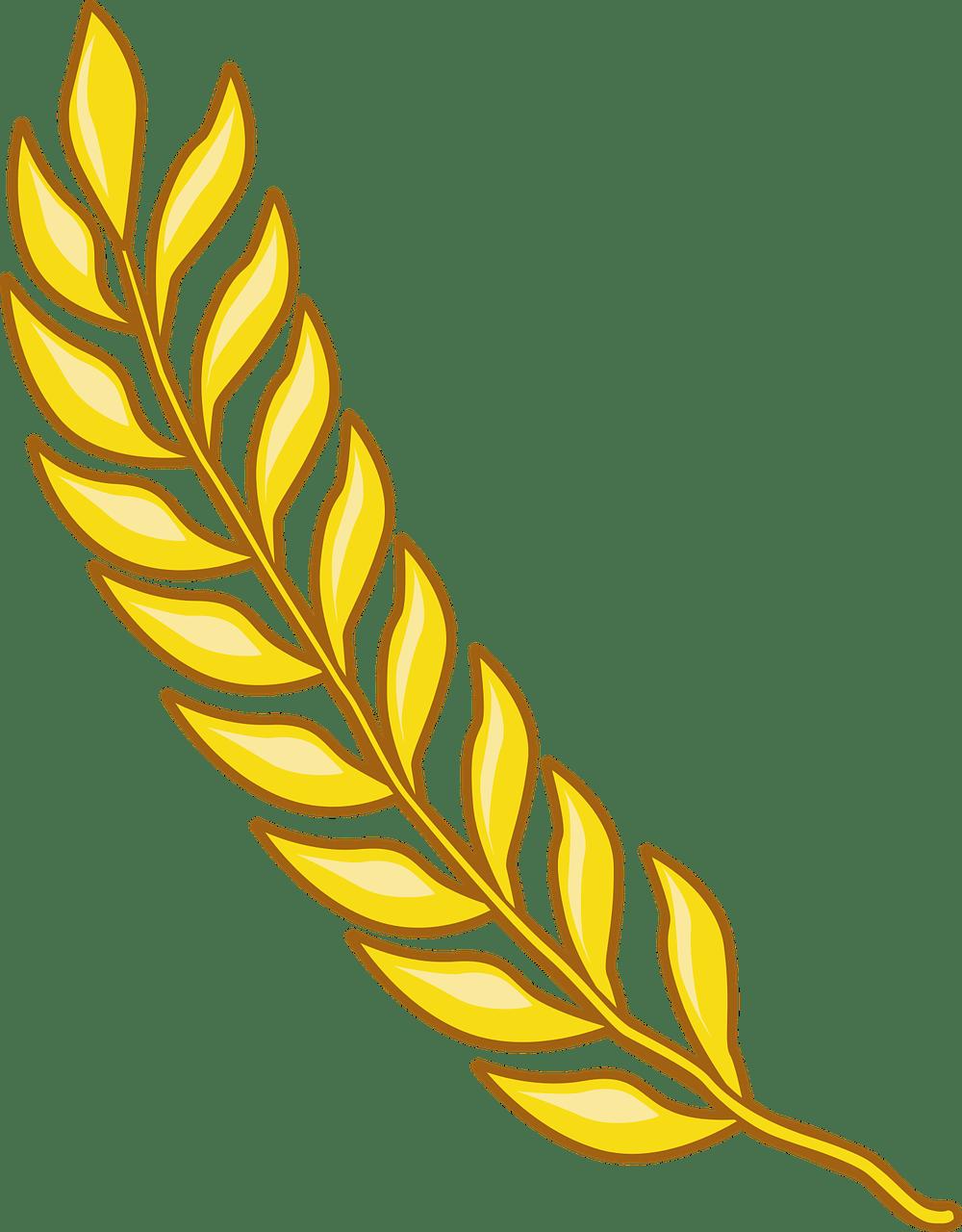 Gambar Padi Vector : gambar, vector, Branch, Paddy, Vector, Graphic, Pixabay