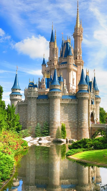 Animal Planet Wallpaper Walt Disney World Castle 183 Free Photo On Pixabay