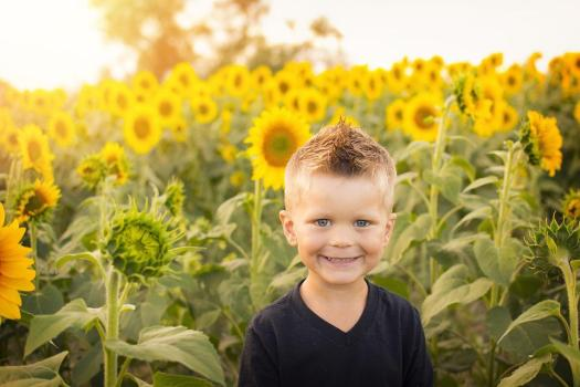Bambino, Sole, Girasoli, Campo, Felice, Infanzia