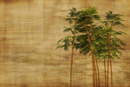1 000 free bamboo