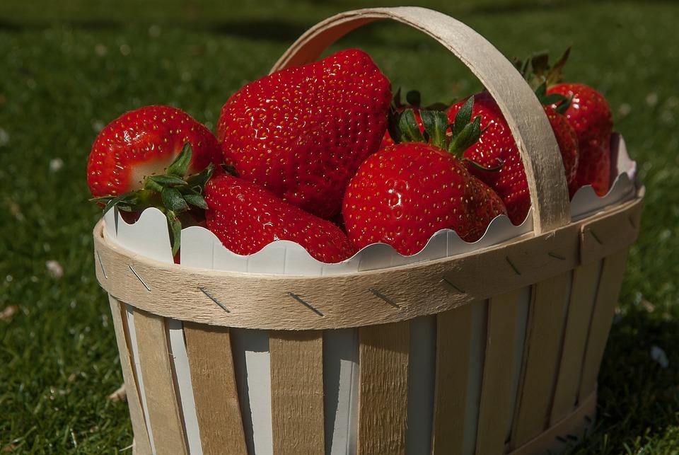 Basket Strawberries Strawberry  Free photo on Pixabay