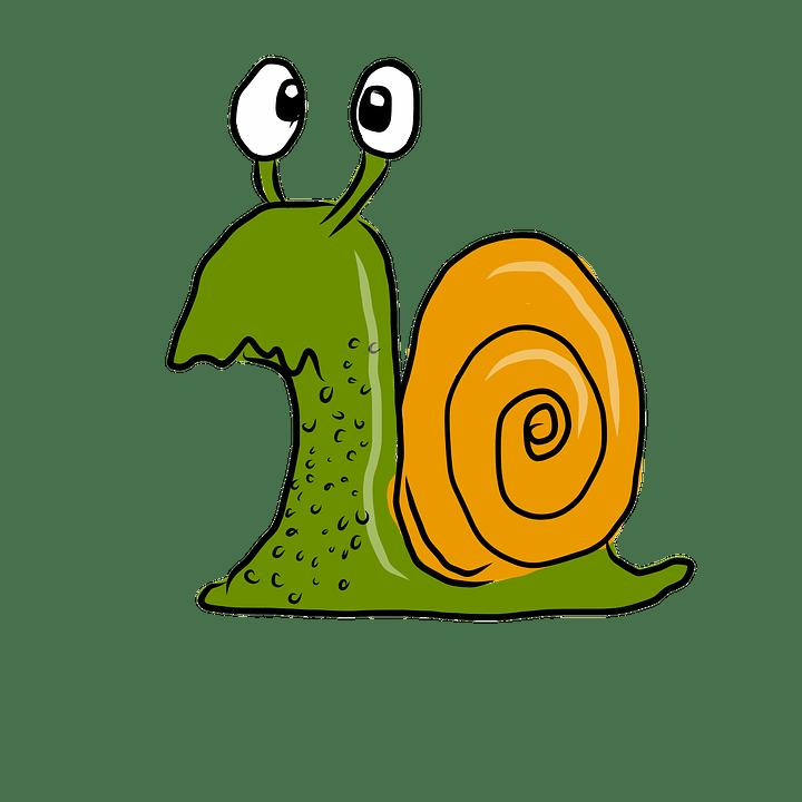 Confused Snail Cartoon  Free image on Pixabay