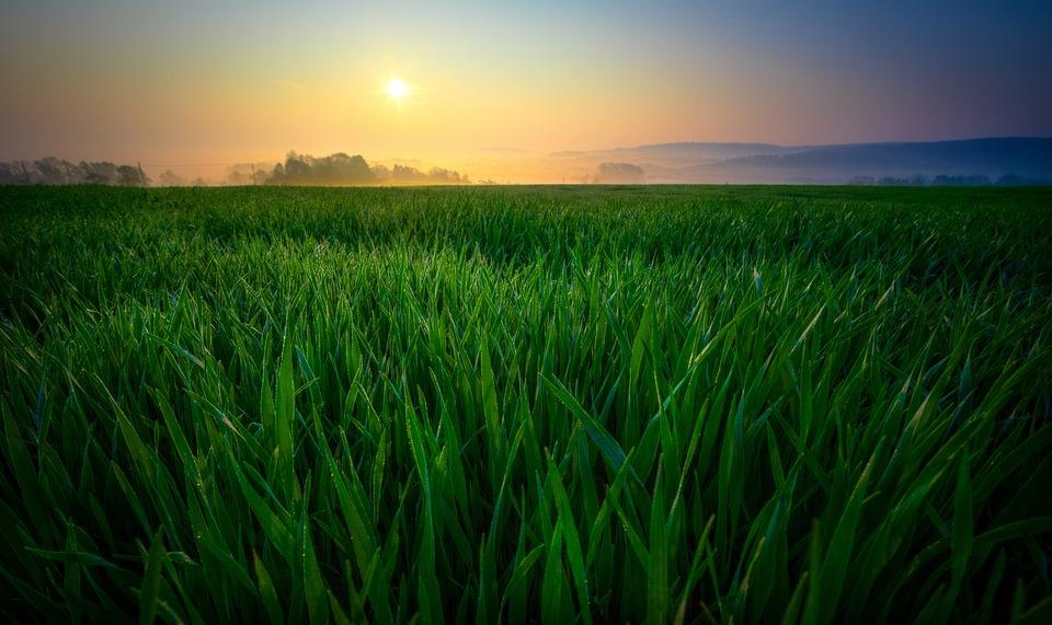 Free Fall Harvest Wallpaper Sunrise Field Nature 183 Free Photo On Pixabay