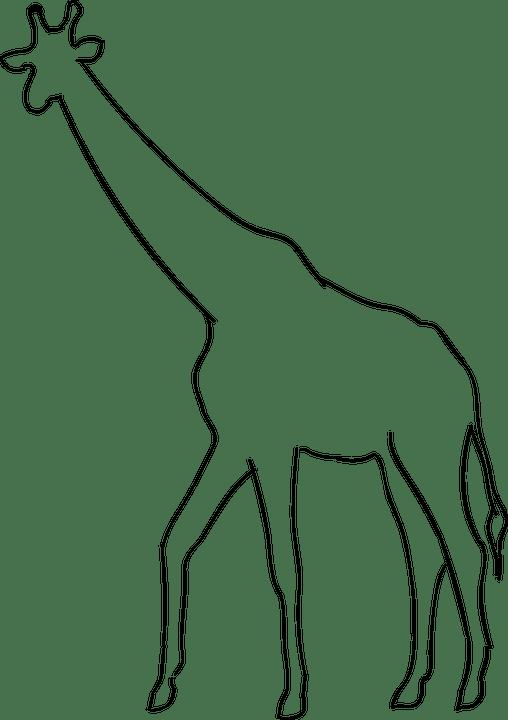 Jirafa Animal La Silueta · Gráficos vectoriales gratis en