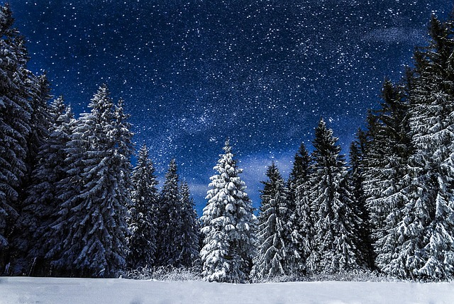 Free Animated Desktop Wallpaper Like Snow Falling On Background Free Photo Snow Nature Night Travel Blue Free Image