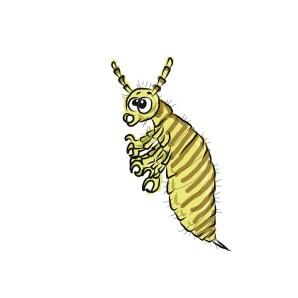 Piojos, Insectos, Parásito