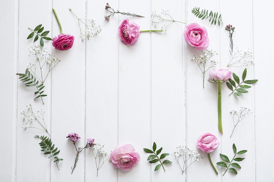 Blumen Hintergrund  Kostenloses Foto auf Pixabay