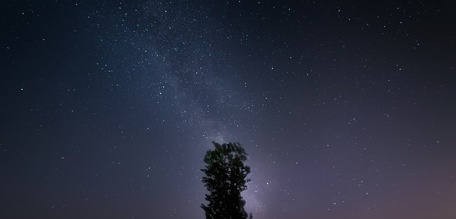 Sky Hd Wallpaper Starry Sky The Milky Way Tree Ppt 183 Free Photo On Pixabay