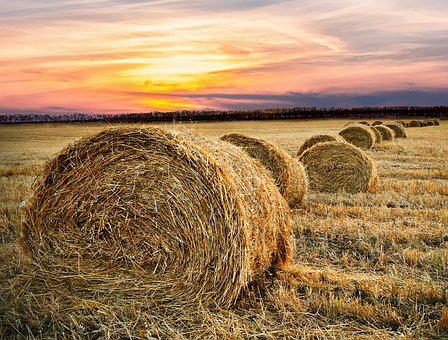 Fall Wallpapers For Desktop Idaho Hay Bales Images 183 Pixabay 183 Download Free Pictures