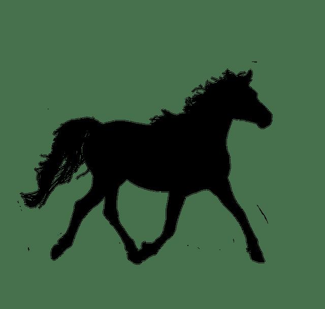 Horse Silhouette Trotting Free Image On Pixabay