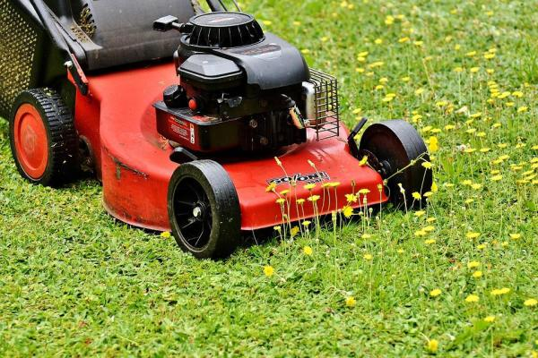lawn mower mow mowing free