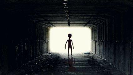 Ufo, Alien, Guy, Pozaziemianin, Ufoludek