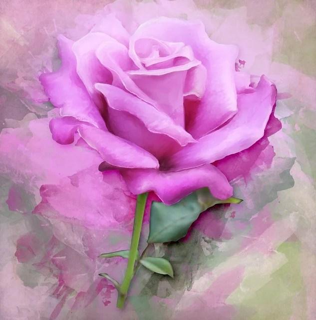 Illustration gratuite Rose Peinture Art Floraux Fleur  Image gratuite sur Pixabay  2421626